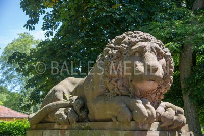 Löwe zum Eingang Schloss Löwenstein, Kleinheubach