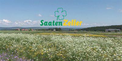 Saaten Zeller, Eichenbühl-Riedern